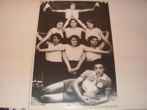 מכבי בסרביה 1931