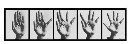 אצבעות תפורות, יוכבד וינפלד 1974-1975