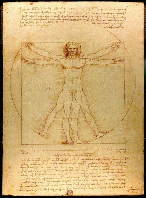 ליאונרדו דה וינצ'י, האדם הויטרובי