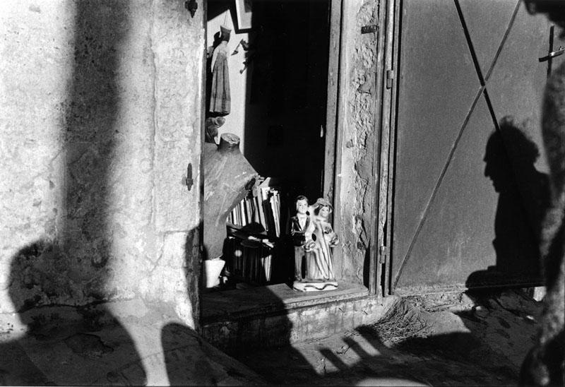 דניס סילק, צילמה אביגיל שימל. כמעט יפה מדי.