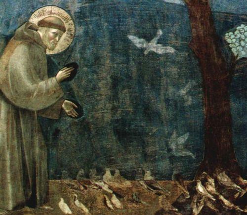 ג'וטו, פרנציסקוס הקדוש דורש לציפורים (פרט)