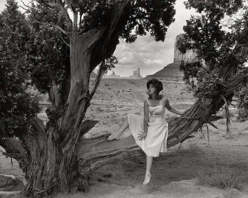 סינדי שרמן untitled film still # 43 -  1979