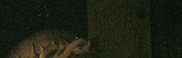 רוחיר ואן דר ויידן, צליבה 1460 (פרט, אותו חום)