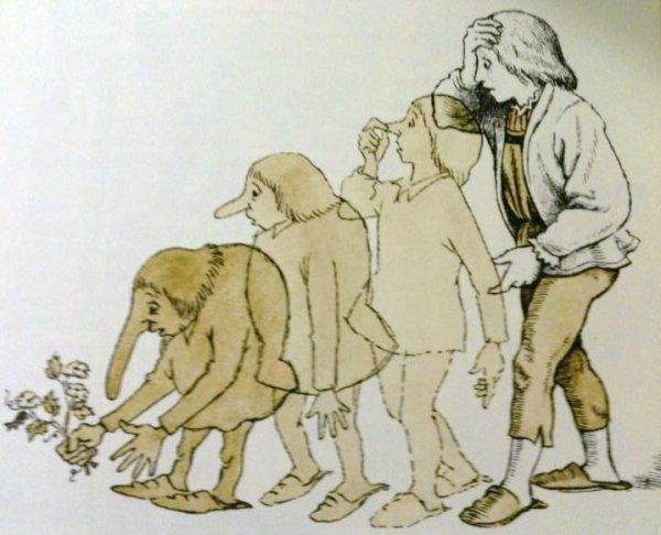 """אבולוציה הפוכה, מתוך """"הגמד חוטם"""" מאת וילהלם האוף, אייר מוריס סנדק"""