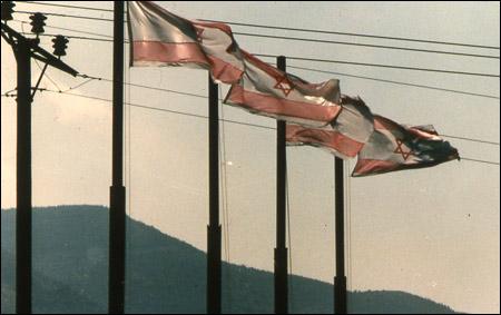 רחל גלעדי, הדגל, מוטות פלדה ומשי, 1983