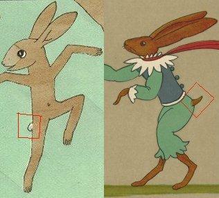 זנבות של ארנבים. איירה תום זיידמן פרויד. משמאל זנב פקעת צחור כמקובל, מימין זנב החוטף (ראו שיר למטה)
