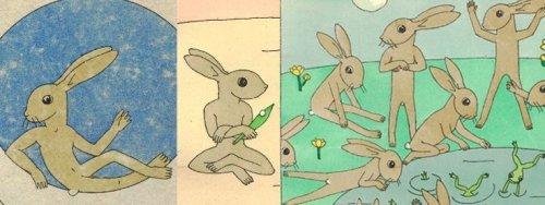 מבחר ארנבות של תום זיידמן פרויד.