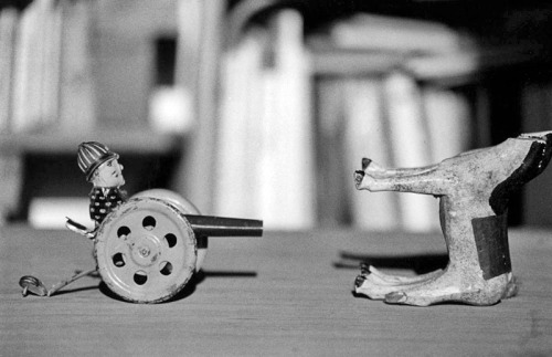 דניס סילק, הצבת חפצים, צילמה אביגיל שימל