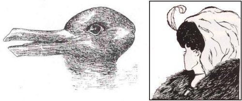 גשטלט. ברווז או ארנב? אישה צעירה או מכשפה זקנה?