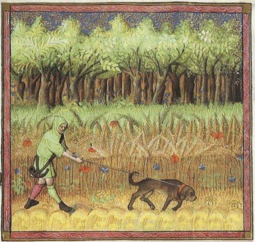 צייד, מתוך ספר הציד של גסטון פבוס, המאה ה-14.