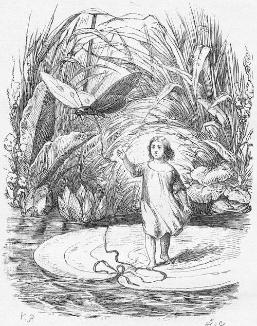 """אייר וילהלם פדרסן, """"אצבעונית"""" דווקא מסיפור של אנדרסן (דומה להפליא לתמונות של אמי בילדותה)"""