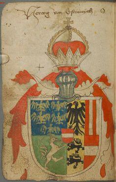 סמל משפחה של אלברכט הרביעי הארכידוכס של אוסטריה (דוגמא אקראית מתוך שלל הדוגמאות שפה